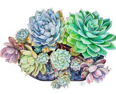 Succulent's lil Visitor Watercolor on paper succulent illustration succulents cactus art Succulents Drawing, Paper Succulents, Watercolor Succulents, Watercolor Flowers, Watercolor And Ink, Watercolor Illustration, Watercolor Paintings, Cactus Painting, Cactus Art
