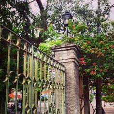 Portal con flores.Asunción