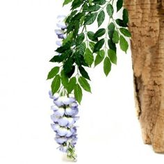 This artificial Wisteria Spray with 3 large blueish lavendar flowers is designed to look like the real thing. It measures approximately from top to bottom including stem). Wisteria, Artificial Flowers, Blue Flowers, That Look, Plants, Top, Design, Fake Flowers, Plant