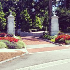 The front #gate of #Emory couldn't be any more #beautiful! #flowers #summer #college #history