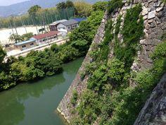 伊賀上野城の高石垣 Japanese Castle, Wakayama, Japan Photo, Character Ideas, Samurai, River, History, City, Outdoor
