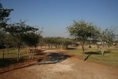 Photo Gallery for Camping (Etotongwe Lodge) Campsite, Summer 2016, Photo Galleries, Africa, Country Roads, Journey, Adventure, Gallery, Day