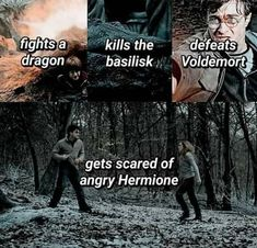 Harry Potter Fakta a Vtipy - The Brief Introduction So that you can Harry Knitter Harry Potter Mems, Images Harry Potter, Mundo Harry Potter, Harry Potter Spells, Harry Potter Cast, Harry Potter Universal, Harry Potter Fandom, Harry Potter Characters, Funny Harry Potter Memes