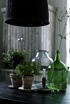 Green glass and herb plants--love the patina!