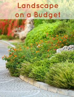 How to Landscape on a Budget :: Landscaping can become an expensive project. Here are a few budget landscaping tips that will be easy on your budget.