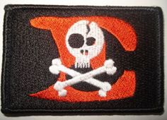 Special Forces E Troop Patch