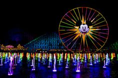 World of Color! I have yet to get through this show without crying. Love it though!
