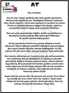 Görüntünün olası içeriği: yazı Learn Turkish, Turkish Language, Science For Kids, Stories For Kids, School Counseling, Preschool Activities, Education, Learning, Children