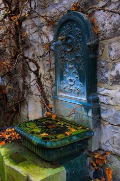 Old fountain in Durbuy, Belgium (by JavLuc)  I cannot decide if I like this or not.  I think the shade of the blue, yes, but much of it, no.
