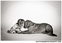 Girl and her dog Toddler Photography, Cat Photography, Vintage Suitcase Photography, Pretty Pictures, Adorable Pictures, Diy Pet, Portrait Poses, Portrait Inspiration, Dog Love
