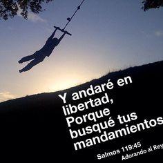 Y andaré en libertad, Porque busqué tus mandamientos. (Salmos 119:45) #Dios #Jesus #Jesucristo #Cristo #EspirituSanto #Biblia #PalabradeDios #Salmos #Avivamiento #Libertad #AdorandoalRey