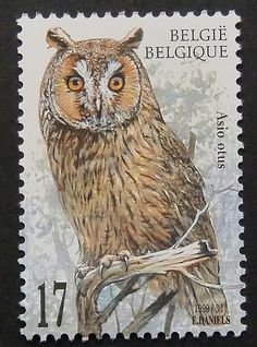 7903  Framed Postage Stamp Art  Asio otus  by PassionGiftStampArt, $12.90