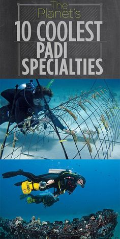 Sport Diver tells us about all the cool specialty courses we can take around the world! #scubadivinggear
