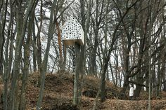 1 | In A Japanese Forest, A Treehouse For Birds And People | Co.Design: business + innovation + design