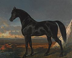 Black Horse Palm by Alfred de Dreux | Art Posters & Prints