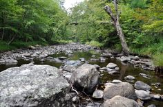New England Photos: Dry Rivers