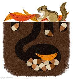 squirrel & acorns // illustration Ryo Takemasa