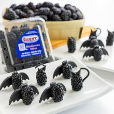 BOO! Watch out for these Scary Berry Cats and Bats!