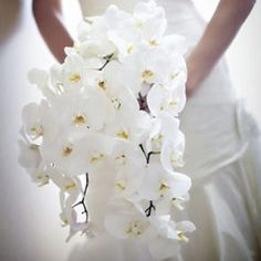 Bouquet cascade d'Orchidée