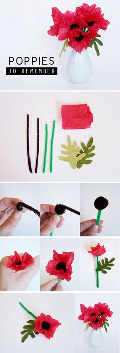 Pipe cleaner and tissue paper poppy