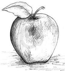 apple drawing black and white - Google Search