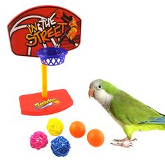 Wooden Bird Parrot Stand Holder Paw Grinding Perch Chew Pets Toys Hanging Cage Drop Ship Sophisticated Technologies Pet Products