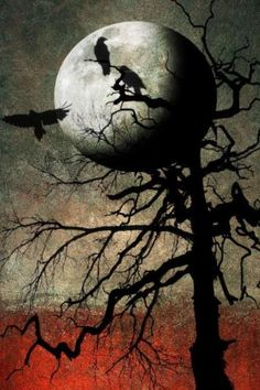 """Crows Ravens: ~ """"Untold Stories of a Full Moon, by hearthy, at… The Magic Faraway Tree, Quoth The Raven, Images Gif, Crows Ravens, Beautiful Moon, Illustration, Gothic Art, Samhain, Halloween Art"""