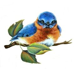 painting of a blue bird