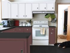 Find the perfect color for your kitchen cabinets! Kitchen Cabinet Colors, Kitchen Cabinetry, Kitchen Colors, Cabinets, Kitchen On A Budget, Kitchen Ideas, Diy Kitchens, Kitchen Makeovers, Diy Network