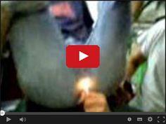 Posadzić dupę na swojej twarzy - SmieszneFilmy.net Weekend Humor