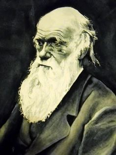"""""""I couldn't find a quote I wanted to use.""""         ~Charles Darwin   watercolor by koalarazorclock"""