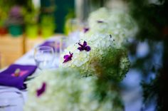 Purple inspired reception centerpieces by Dream Bloom and photos by Glen Cabotage Centerpieces, Table Decorations, Reception, Bloom, Joy, Inspired, Fruit, Purple, Flowers