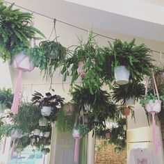 Indoor planting done well at Palm Vaults in Hackney London. Interiors should all look like this.