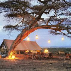 I want to sleep in a tent like this when I do an African safari! Tanzania, Safari Wedding, Safari Chic, Wanderlust, Out Of Africa, British Colonial, African Safari, Glamping, The Great Outdoors