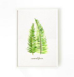 Buy 2 Get 1 Free Fern art Print, Watercolor art, Botanical print, Housewares, Nature decor, Wall decor, Wall hanging, Sword fern 5x7 4x6