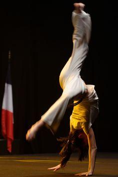Capoeira_demonstration_Master_de_fleuret_2013_t221742.jpg (2670×4001)