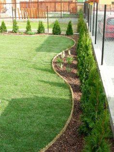 Gardens Discover 46 Elegant Evergreen Vines Home Decor Ideas Back Gardens, Small Gardens, Outdoor Gardens, Landscaping Along Fence, Backyard Landscaping, Landscaping Ideas, Arborvitae Landscaping, Beautiful Flowers Garden, Beautiful Gardens