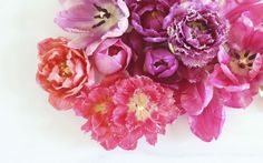 Digital Blooms Desktop Wallpaper Download 2 | May 2016 // JustineCelina.com x Rebecca Dawn Design
