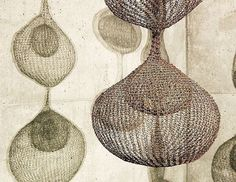 The inspiration for our new sheet design comes from the space-defining hanging sculptures of California artist Ruth Asawa, featured at San Francisco's de Young Museum. Read more about her on our blog-link in profile. #Coyuchi #inspiration