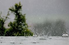 Rainwater Collection and Water Conservation: It's Not as Simple as It Seems
