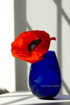 Blue Vase Series - 1