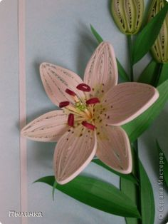 Страну Мастеров | Quilling: Lily Part 1 | Step by Step Picture Instructions: http://stranamasterov.ru/node/102493?c=favorite