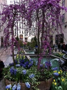 Springtime in New YorkLuxury Apartment Rentals in New York City  Affordable luxury  . Affordable Luxury Apartments In Nyc. Home Design Ideas