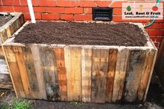 Our self-watering  wicking bed, all ready for planting