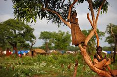 Yida, South Sudan: Sudanese girls on a tree at the refugee camp    Photograph: Paula Bronstein/Getty