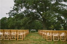 Our 200-year-old Laurel Oak by the lake nestles extraordinary outdoor weddings.