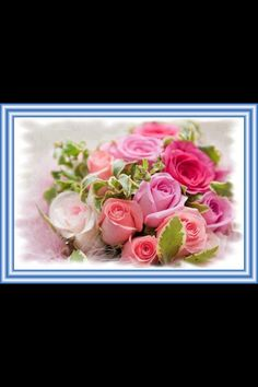 Frames bouquet of roses