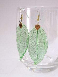 real leaf skeleton earrings by catamation on Etsy, $18.00