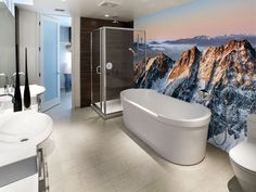 Mountain Bathroom Murals Theme Picture