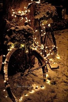 Love the lights on the old bicycle